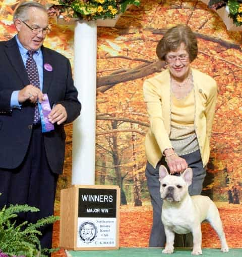 AKC Champion Smokey Valley's White Magic